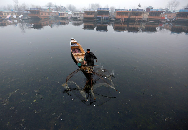 A fisherman casts his net to catch fish in the waters of Dal Lake on a cold winter morning in Srinagar, December 9, 2016. (Photo by Danish Ismail/Reuters)