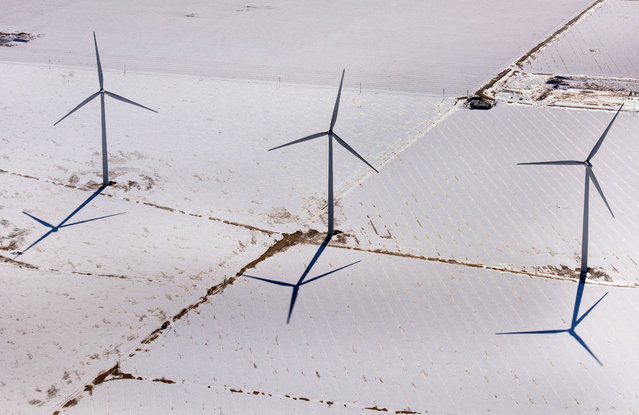 Texas wind turbines are massive. (Photo by Jassen Todorov/Caters News)