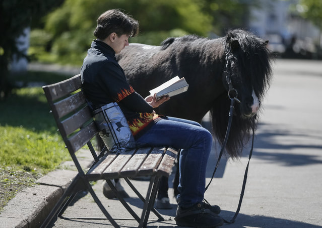 A man reads a book as his pony waits nearby, in central of Slaviansk, Ukraine April 26, 2014. (Photo by Gleb Garanich/Reuters)
