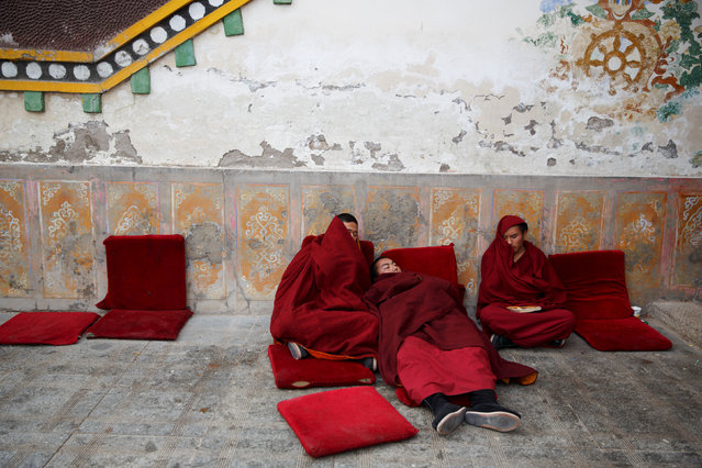 Buddhist monks rest outside a prayer hall between chanting sessions at Rongwo Monastery in the largely ethnic Tibetan town of Rebkong, Qinghai province, China March 9, 2019. (Photo by Thomas Peter/Reuters)