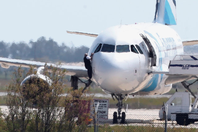 A man  leaves the hijacked aircraft of Egyptair from pilot window at Larnaca airport in Cyprus Tuesday, March 29, 2016. An Egyptian man hijacked an EgyptAir plane Tuesday and forced it to land on the island of Cyprus, where all passengers and crew were eventually freed and he himself was arrested, Egyptian and Cypriot officials said. The hijacker had kept four crew members and three passengers on board, but TV footage later showed several people disembarking from the aircraft and a man who appeared to be a crew member climbing out of the cockpit window. (Photo by Petros Karadjias/AP Photo)