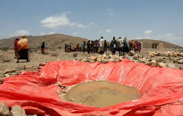 Displaced people gather at an artificial water pan near Habaas town of Awdal region, Somaliland April 9, 2016. (Photo by Feisal Omar/Reuters)