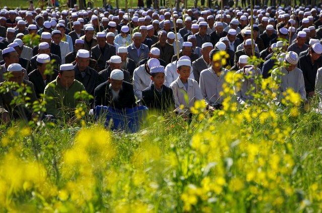 Muslims attend a massive prayer session next to crop fields near a mosque during Eid al-Fitr, marking the end of the holy month of Ramadan, in Datong county, Qinghai province, China, July 17, 2015. (Photo by Simon Zo/Reuters)