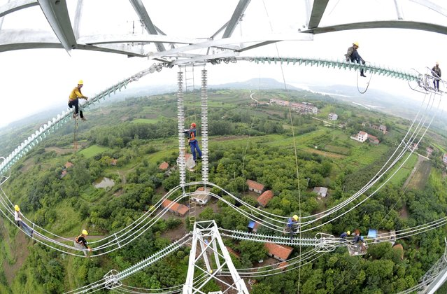 Workers inspect newly-built electricity pylons above crop fields in Chuzhou, Anhui province, China, July 9, 2015. (Photo by Reuters/China Daily)