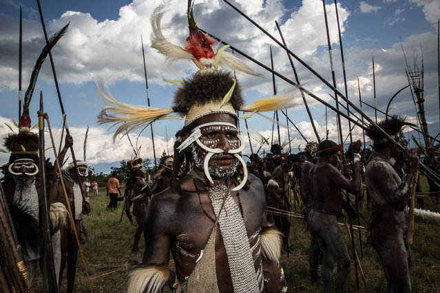 A group of Papuanese tribal men prepare to perfrom mock battles during the 25th Baliem Valley festival on August 7, 2014 in Wamena, Indonesia. (Photo by Agung Parameswara/Getty Images)