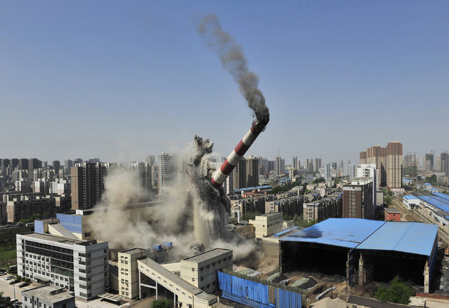 A 150-meter-high chimney, part of a heating factory, collapses as it is demolished by explosives in Shenyang, Liaoning province, China April 28, 2014. (Photo by Reuters/Stringer)