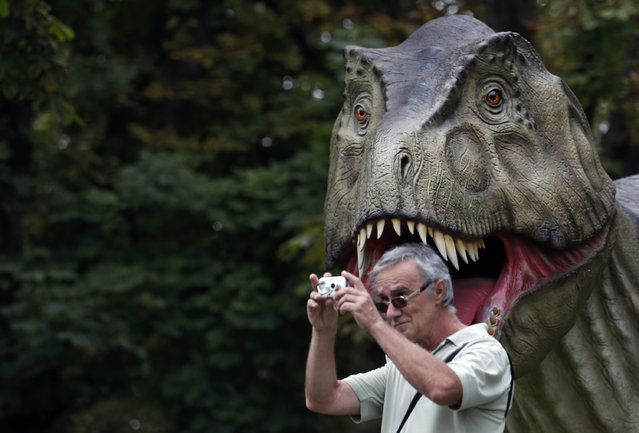 """A visitor takes a picture during the Dinosaurs exhibition in Belgrade, Serbia, Thursday, August 21, 2014. """"Dino Park"""" has been opened at Belgrade's Kalemegdan Fortress. (Photo by Darko Vojinovic/AP Photo)"""