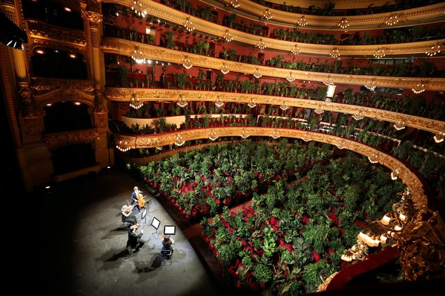 "Nursery plants are seen placed in people's seats during a rehearsal as Barcelona's Gran Teatre del Liceu opera reopens its doors with a concert for plants, to raise awareness about the importance of an audience after the coronavirus lockdown, in Barcelona, Spain on June 22, 2020. The Gran Teatre del Liceu reopens its doors, in which the 2,292 seats of the auditorium will be occupied on this occasion by plants. It will be on 22 June, broadcast live online, when the UceLi Quartet string quartet performs Puccini's ""Crisantemi"" for this verdant public, brought in from local nurseries. (Photo by Nacho Doce/Reuters)"