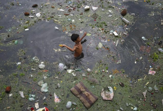 A boy throws a banana after collecting it from the polluted waters of river Sabarmati, in Ahmedabad July 18, 2013. (Photo by Amit Dave/Reuters)