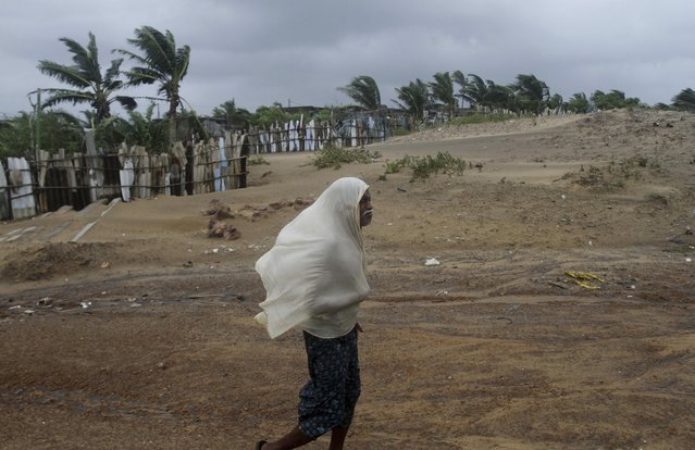 An Indian villager covers himself with a piece of cloth to protect from strong winds as he walks through the Bay of Bengal coast at Gopalpur, Orissa, about 285 kilometers (178 miles) north east of Visakhapatnam, India, Sunday, October 12, 2014. (Photo by Biswaranjan Rout/AP Photo)