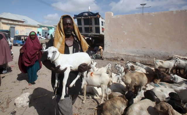 A trader carries his goat to a livestock market ahead of the Eid al-Adha festival in Somalia's capital Mogadishu, September 22, 2015. (Photo by Ismail Taxta/Reuters)