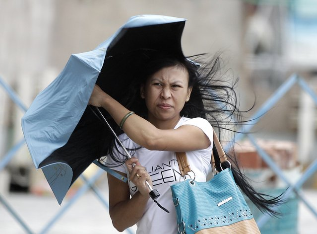 A woman holds her umbrella while walking against strong winds as tropical storm Fung-wong hits Taiwan, in Taipei September 21, 2014. (Photo by Pichi Chuang/Reuters)