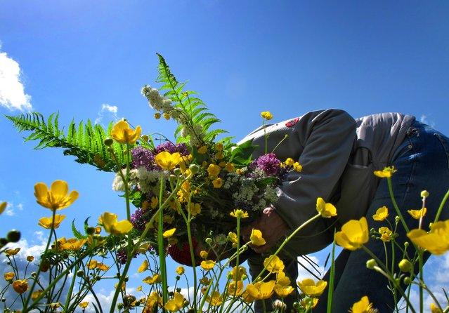 A woman picks flowers from a meadow on May 11, 2014 in Kaufbeuren, southern Germany. (Photo by Karl-Josef Hildenbrand/AFP Photo/DPA)