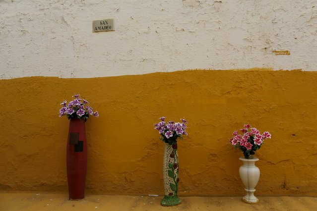 Vases of flowers are displayed as part of decoration of a tomb during All Saints Day at the cemetery of San Fernando in the Andalusian capital of Seville, November 1, 2015. (Photo by Marcelo del Pozo/Reuters)