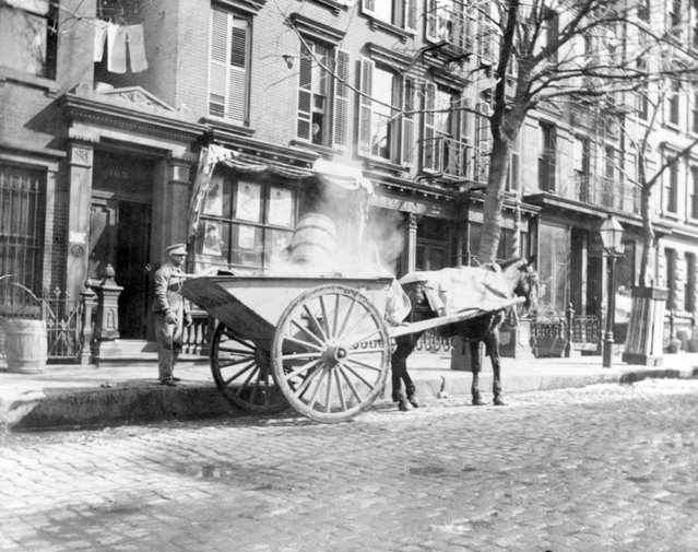 Horse-drawn ash cart. New York City, circa 1896. (Photo by Elizabeth Alice Austen)
