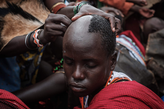 The hair of circumcised Maasai young men are shaved by their mother after coming out from the bush near Kilgoris, Kenya, on the last day of the annual one- month- long circumcision ceremony, on December 20, 2017. During the end year school holidays, Maasai young men around 18 years old stay in the bush after circumcision to train singing, hunting and learn discipline and how to protect their community to become Moran (warrior) as their rite of passage. As following Kenya' s new law, the community stopped the circumcision ceremony for young women since 2014. (Photo by Yasuyoshi Chiba/AFP Photo)
