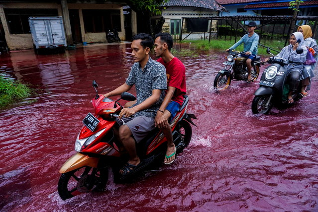 People ride motorbikes through a flooded road with red water due to the dye-waste from cloth factories, in Pekalongan, Central Java province, Indonesia, February 6, 2021. (Photo by Harviyan Perdana Putra/Antara Foto via Reuters)