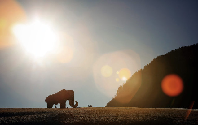 A sculpture of a mammoth is seen on a snow-free field in Bogen, Austria, 30 December 2015. (Photo by Frederick von Erichsen/EPA)
