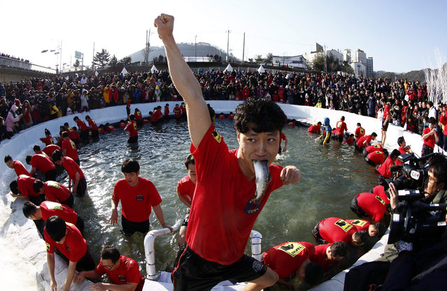 A visitor celebrates after attending a bare hand fishing event in a frozen river during the Hwacheon Sancheoneo Ice Festival at Hwacheon-gun, Gangwon province, South Korea, 09 January 2016. The festival runs under the theme 'Unfrozen Hearts, Unforgettable Memories' from 09 January to 31 January 2016. (Photo by Jeon Heon-Kyun/EPA)