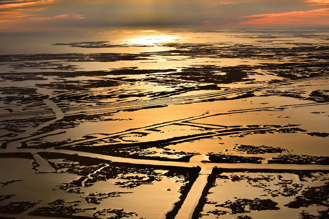 Louisiana wetlands at sunset. (Photo by Jassen Todorov/Caters News)
