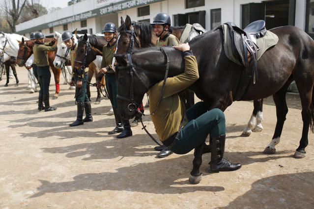 In this March 19, 2019, photo, a Nepalese army soldier plays with his horse as others watch before leaving for rehearsals for Ghode Jatra festival in Kathmandu, Nepal. (Photo by Niranjan Shrestha/AP Photo)