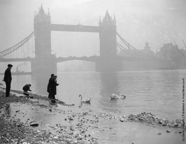 1928: Strollers feed the swans near Tower Bridge, London