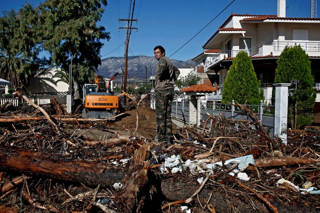 A man stands on top of a pile of trees that block a road after a heavy storm hit the village of Kineta, Greece, 25 November 2019. Storm Gyrionis triggered heavy rainfall in the region of Attica and other parts of Greece, causing damages to homes and roads. (Photo by Yannis Kolesidis/EPA/EFE)