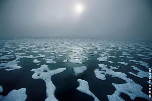 Arctic ice is rapidly melting away