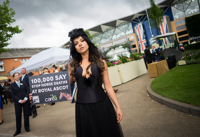 A lady protests over horse deaths due to racing on Ladies Day at Royal Ascot, near London, Britain, 16 June 2016. The annual event is a five-day social / horse racing meeting. (Photo by Andrew Cowie/EPA)