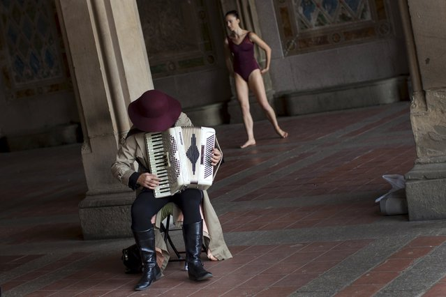 A woman plays an accordion as a dancer rehearses behind her at Belvedere Terrace in New York's Central Park in Manhattan, October 8, 2015. (Photo by Mike Segar/Reuters)
