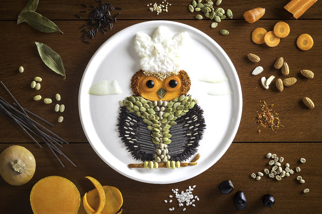 An owl made out of seeds and rice. (Photo by Anna Keville Joyce/Caters News)