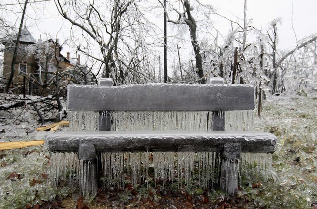 A bench covered in ice on Buda Hills in Budapest, December 3, 2014. Tens of thousand of homes on the outskirts of Budapest went without electricity this week as freezing rain blanketed the area and falling trees cut power lines, Hungary's Disaster Relief Agency said. (Photo by Bernadett Szabo/Reuters)
