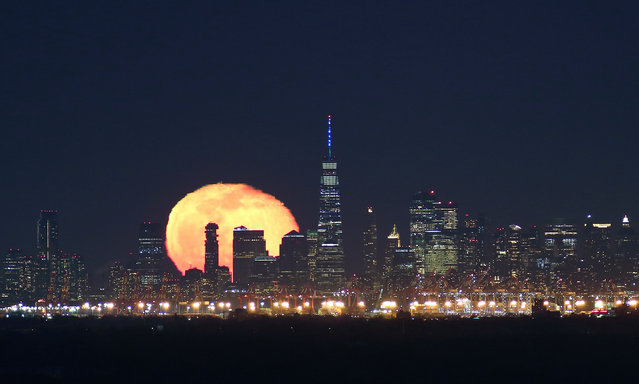 The moon rises behind lower Manhattan and One World Trade Center in New York City two days after the full wolf moon rose on January 30, 2021 as seen from Green Brook Township, New Jersey. (Photo by Gary Hershorn/Getty Images)