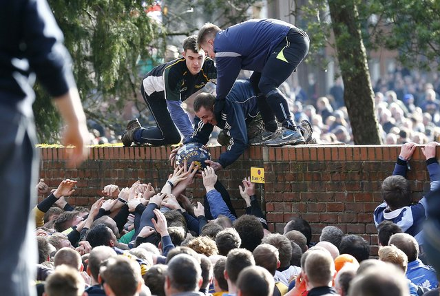 The ball is pulled from the hug during the annual Shrovetide football match in Ashbourne, central England February 17, 2015. The aim of the teams, the Up'ards and the Down'ards, is to score by tapping the ball three times on stone goal plinths three miles apart on the banks of the River Henmore. The game dates back to the 17th century. (Photo by Darren Staples/Reuters)