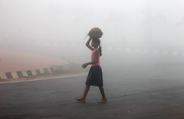 A girl carries a basket of cow-dung as she crosses a road on a foggy winter morning in Agartala, India, December 11, 2016. (Photo by Jayanta Dey/Reuters)