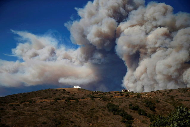 Smoke from a wildfire is seen in Calabasas, California, U.S. November 9, 2018. (Photo by Eric Thayer/Reuters)