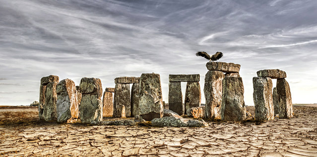 Stonehenge, England, after severe drought. (Photo by Joel Krebs/Caters News)