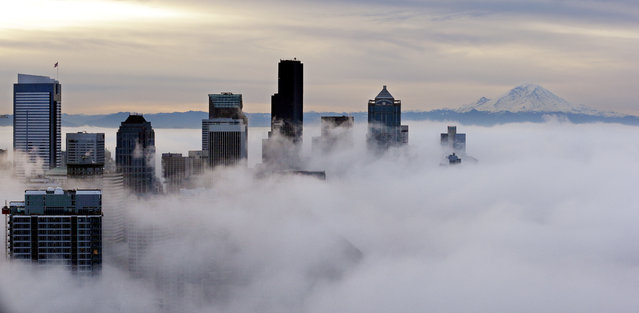 Downtown buildings rise above a low-level morning fog as Mount Rainier is seen some 80 miles distant Friday, January 9, 2015, in this view from atop the Space Needle in Seattle. (Photo by Elaine Thompson/AP Photo)