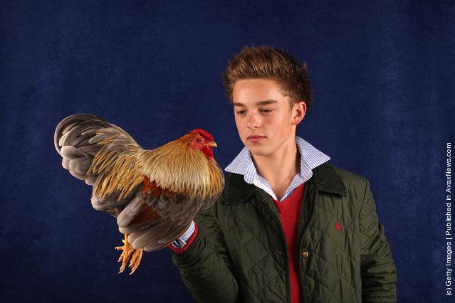 Callum Vivian-Crowder, from Wiltshire, holds his 12 month old Blue Partridge Wyandotte Bantam Cockerel
