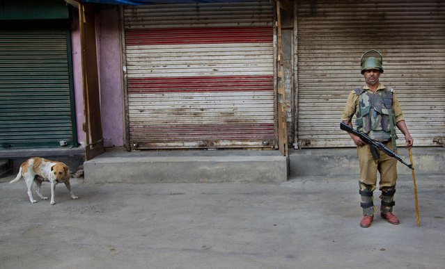 An Indian paramilitary soldier stands guard outside a closed market area in Srinagar, Indian controlled Kashmir, Thursday, May 21, 2015. Hundreds of government forces with automatic weapons patrolled the streets of Indian Kashmir's main city to stop a rally by separatists to mark the anniversaries of the assassinations of two Kashmiri leaders, Mirwaiz Mohammed Farooq and Abdul Gani Lone. (Photo by Dar Yasin/AP Photo)