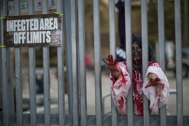 A person dressed like a zombie takes part in The Walking Dead Escape experience at Petco Park during the 2015 Comic-Con International Convention in San Diego, California July 10, 2015. (Photo by Mario Anzuoni/Reuters)