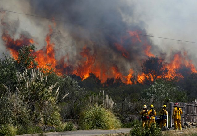 Fire fighters keep a close watch on the flames from the Cocos Fire as they stand ready to protect a home in San Marcos, California May 15, 2014. (Photo by Mike Blake/Reuters)