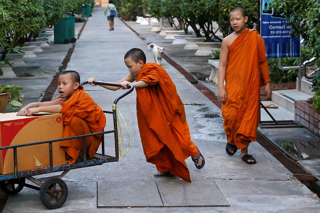 A Buddhist novice pushes a fellow novice in a cart at Wat Mahathat Yuwaratrangsarit temple in Bangkok June 6, 2016. (Photo by Jorge Silva/Reuters)