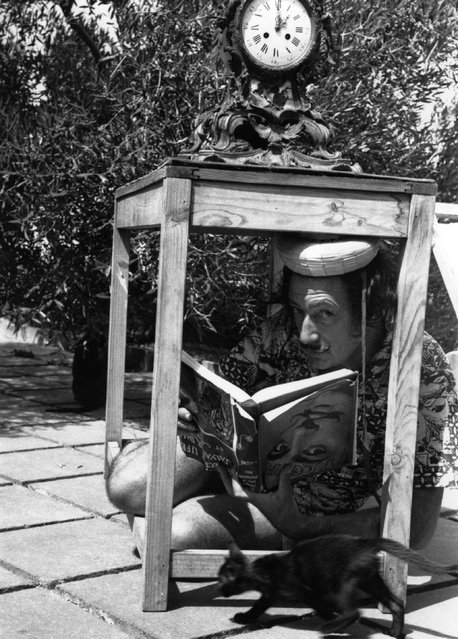 Surrealist artist Salvador Dali (1904–1989) in a bizarre pose sheltering from the sun in the garden at his home in Cadaques on the Spanish Costa Brava. The book he holds, needless to say, is upside down. 8th January 1955.  (Photo by Charles Hewitt)