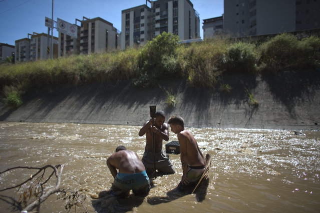 In this December 5, 2017 photo, Angel Villanueva, center, uses a metal bar to break up the mud at the bottom of the polluted Guaire River in Caracas, Venezuela. The 25-year old says people don't want to touch him, or come near because they fear they'll get an infection from him from being in the river, but that he doesn't know of anybody who has died from scavenging the water. (Photo by Ariana Cubillos/AP Photo)