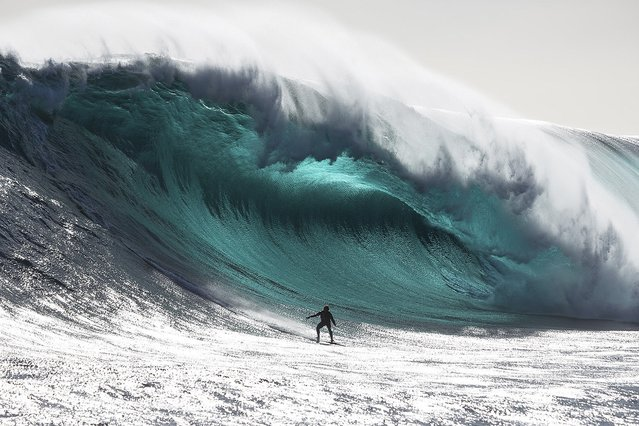 """Australian surfer Marti Paradisis rides a wave near Pedra Branca Rock, south of Tasmania in the Southern Ocean in this in this file photograph taken in November 2012 in this picture provided by Big Wave Awards. Paradisis won the """"Biggest Wave"""" section of the Australiasian Big Wave Awards, which included $20,000 prize-money. Picture taken November 2012. (Photo by Andrew Chisholm/Reutars/Big Wave Awards)"""