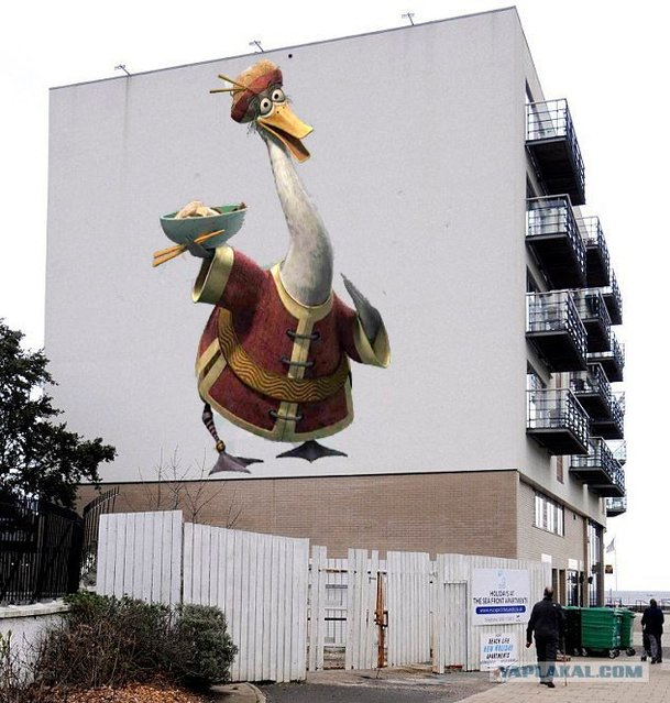 Geese VS Wall