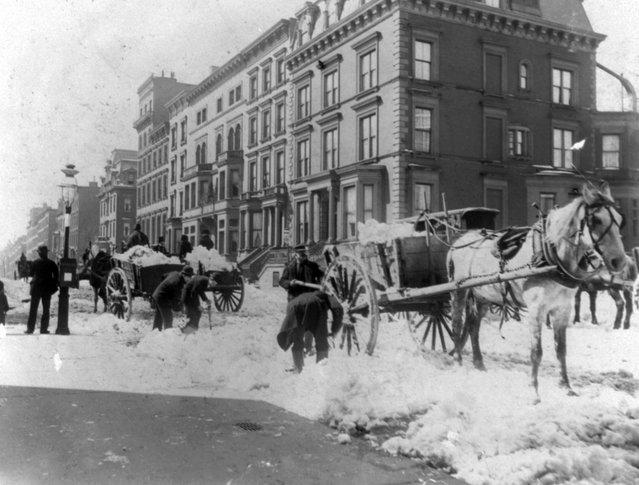 Street types of New York City: Men loading horse-drawn snow carts,  circa 1896. (Photo by Elizabeth Alice Austen)
