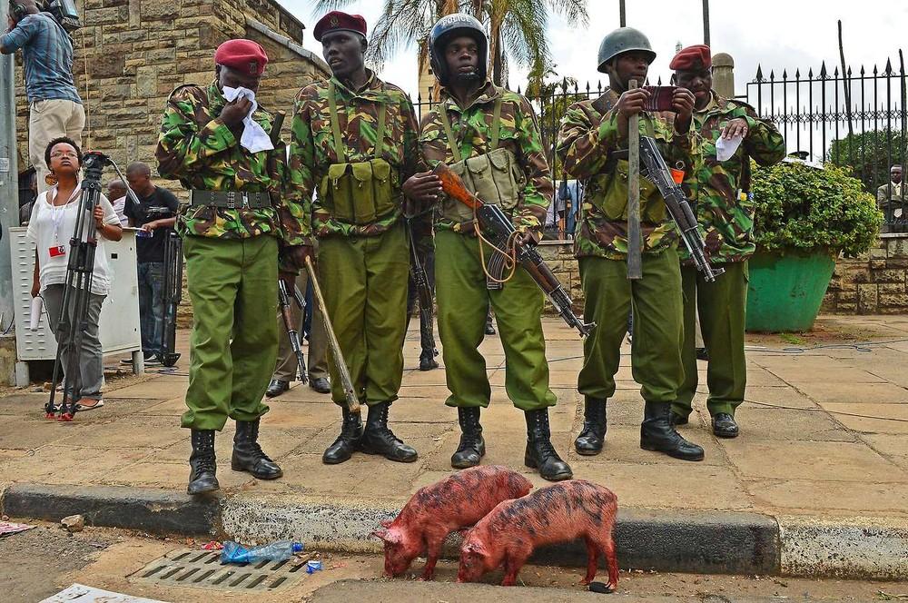 """Greedy Pig"" Protests in Kenya"