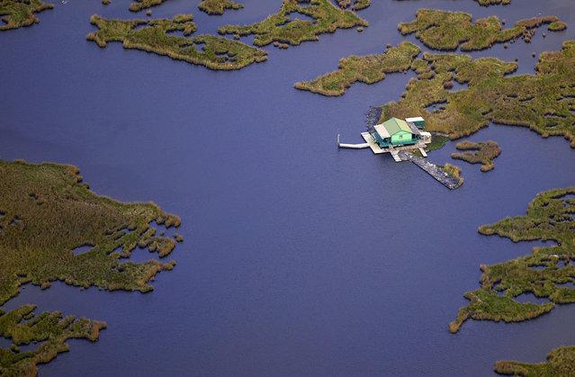 Louisiana wetlands. (Photo by Jassen Todorov/Caters News)
